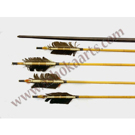 Group of South American Amazon Arrows and a Bow
