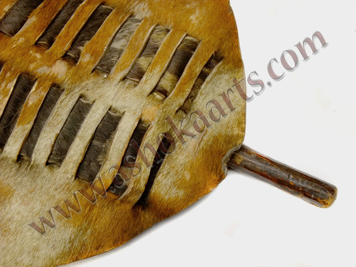 Large Antique Zulu shield with original stick and knobkerrie